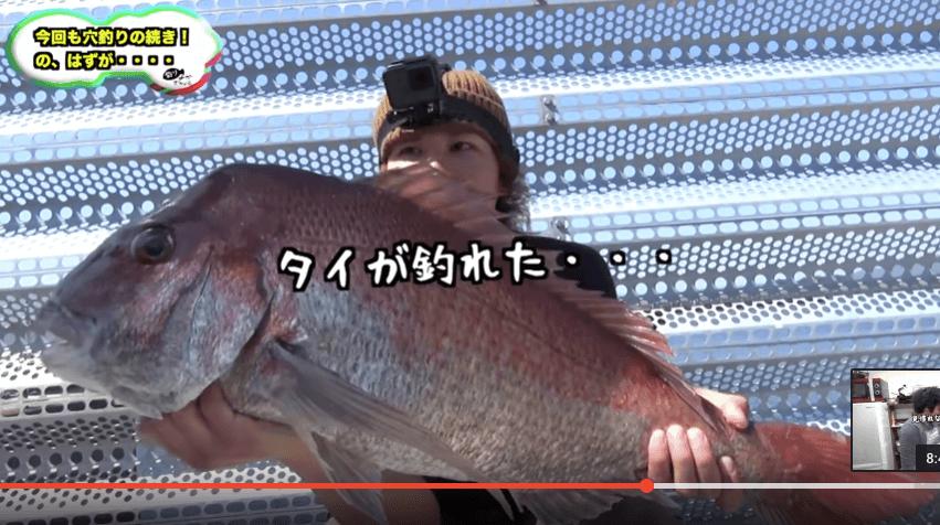 きむ_鯛4