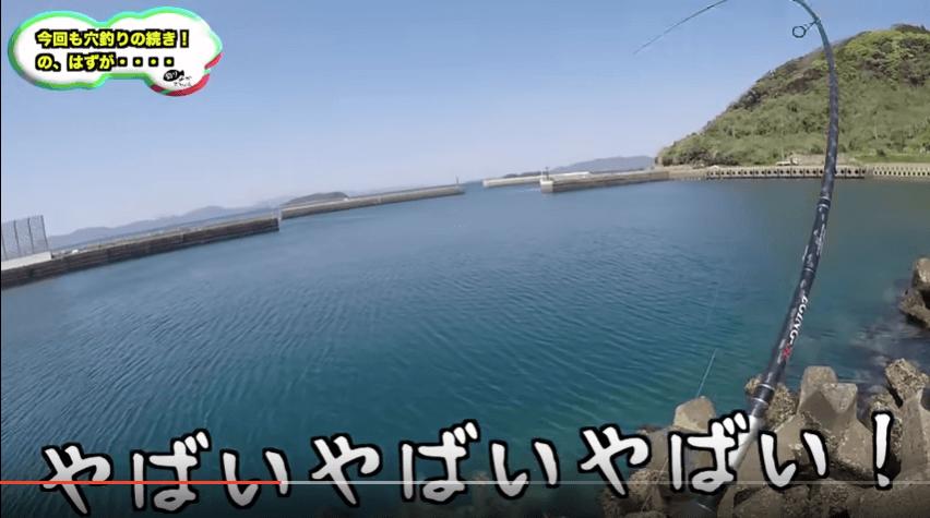 きむ_鯛2
