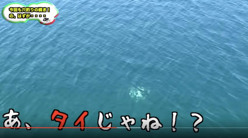 きむ_鯛3