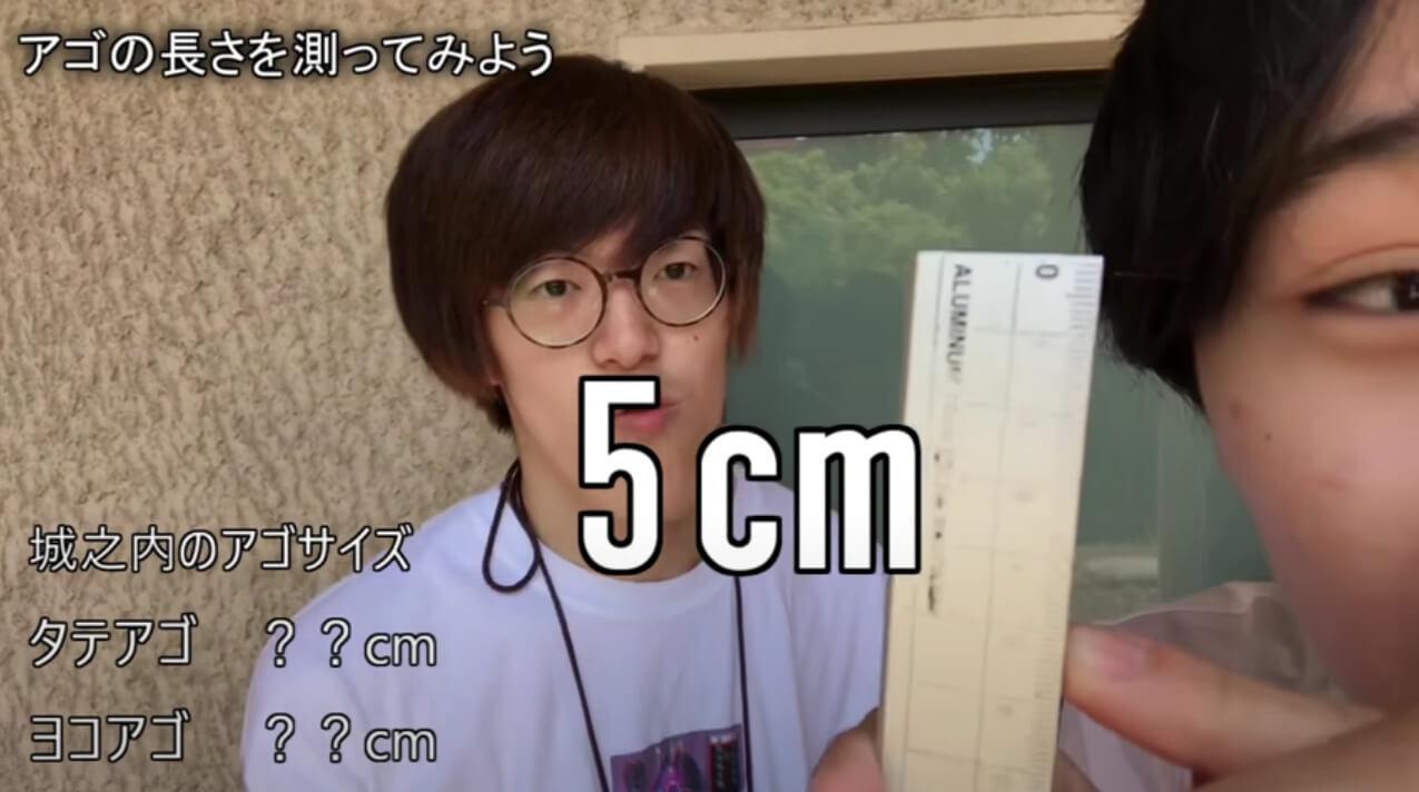 城之内チャンネル_アゴの長さ(縦)